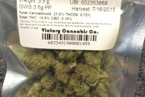 Great White Shark Marijuana Strain product image