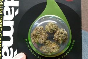 OG Kush Marijuana Strain product image