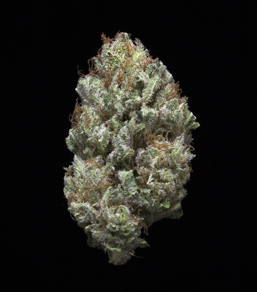 Berry White Strain Information — Leafly