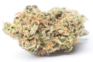 Cinex Marijuana Strain product image