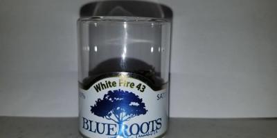 White Fire 43