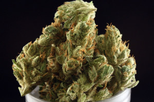 OG Chem Marijuana Strain image