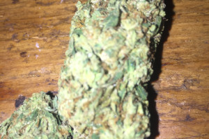 Northern Lights Marijuana Strain product image