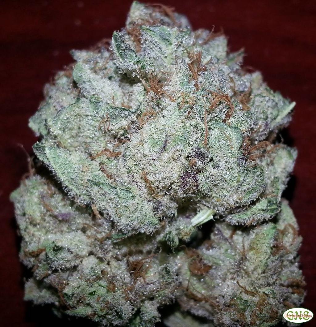 Indica | Marijuana Reviews & Photos | AllBud