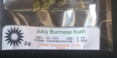 Juicy Burmese Kush