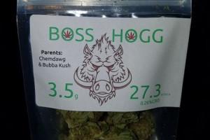 Boss Hog image
