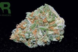 Maui Marijuana Strain image