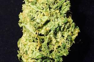 Blue Dream Marijuana Strain product image