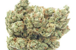 khalifa kush Marijuana Strain product image