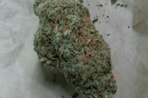 Romulan Marijuana Strain image