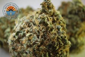 Liberty Haze Marijuana Strain featured image