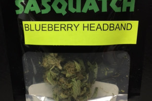 Blueberry Headband image