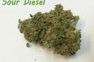 Sour Diesel Marijuana Strain product image