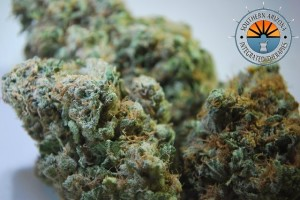 Pineapple Express Marijuana Strain featured image