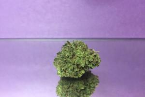 DJ Short Blueberry Marijuana Strain product image