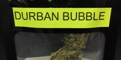 Durban Bubble