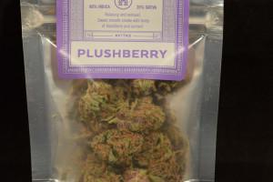 Plushberry Marijuana Strain product image