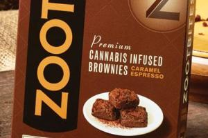 Brownies - Zoots Brownie Bites - 6pk image