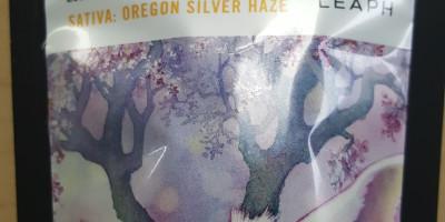 Oregon Silver Haze