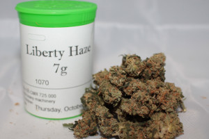 Liberty Haze Marijuana Strain product image