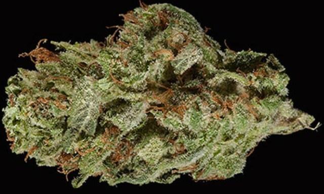 Strawberry Banana Sherbert | Marijuana Strain Reviews | AllBud
