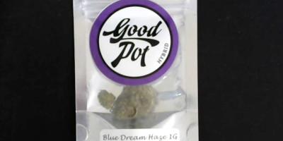 Blue Dream Haze