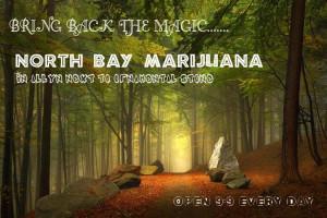 North Bay Marijuana Marijuana Dispensary image