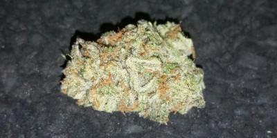 Buddah Tahoe OG 16% THC