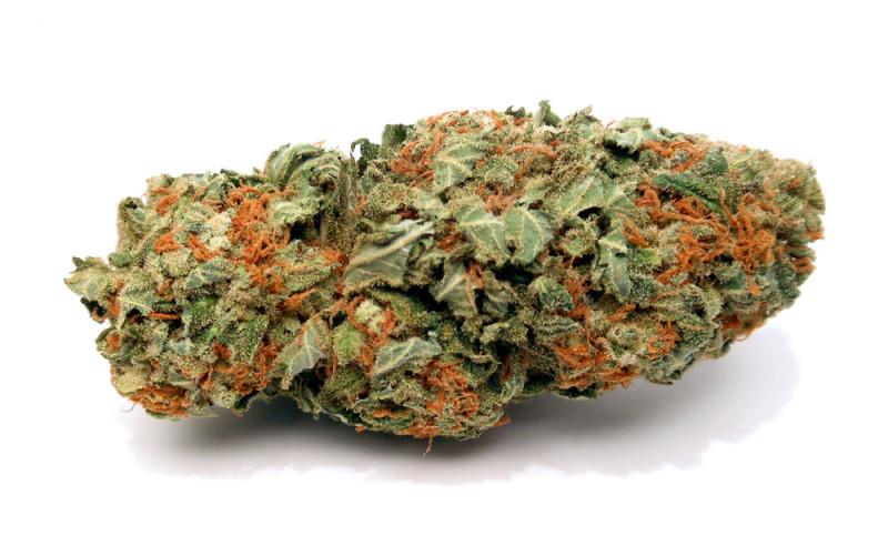 Pink kush weed
