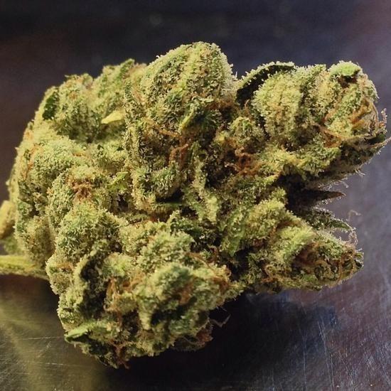 От марихуаны чувствуешь что очистить домашних семена конопли в условиях как