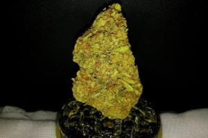 Tangie Marijuana Strain product image