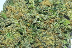 Cherry Pie Marijuana Strain image