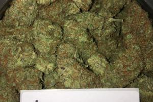 Sugar Black Rose Marijuana Strain product image