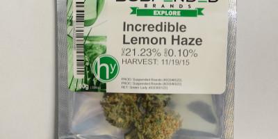 Incredible Lemon Haze