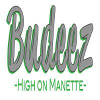 Budeez Marijuna Dispensary featured image