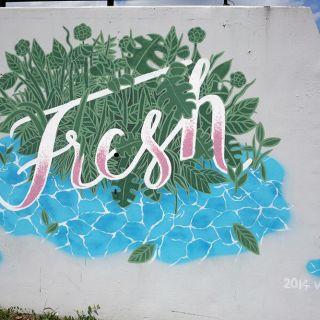 Murals von Vikunia
