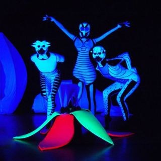 Blacklight and LED Show by Project PQ
