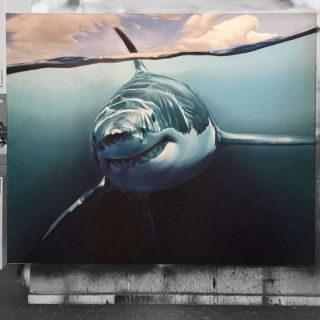 Photorealistic Canvas Painting by Smates