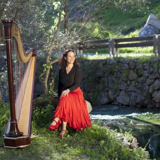 Concerto  por Helena Madeira