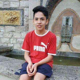 Yan Le profile picture
