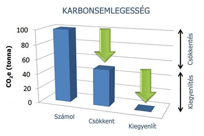 Hogyan működik jól a karbonsemlegesítés? | ZERO CARBON