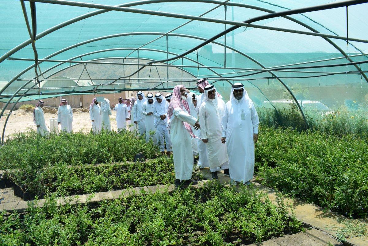 أعضء مجلس الإدارة في زيارة لجمعية الرمان التعاونية بمنطقة الباحة