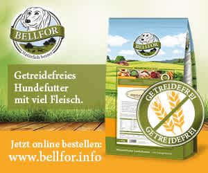 Banner Bellfor Hundefutter 3