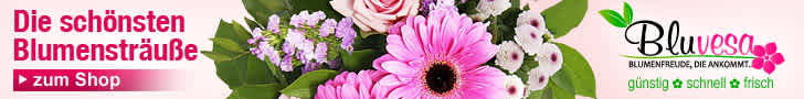 Bluvesa - Blumenversandshop