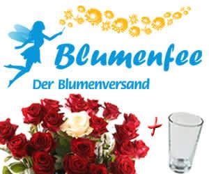 Blumenfee_300_250_Date_11_04_04