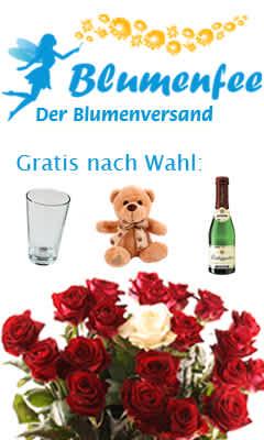 Blumenfee_240_400_Date_11_05_26