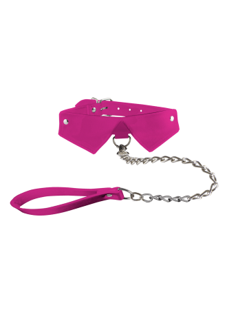 Exclusive Collar and Leash