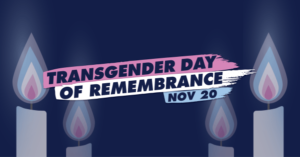 Trans Awareness Week ⚧️