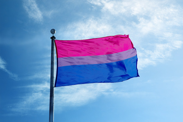 On Bisexuality