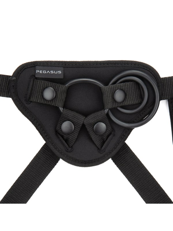 Pegasus Curved Realistic Harness Set Image 3